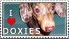Doxie Stamp by dappledoxie