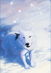 DotW - The First Snow by OneMinuteSketch