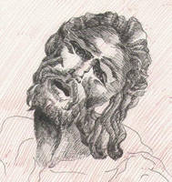 sketch laocoonte's face by freesoul93