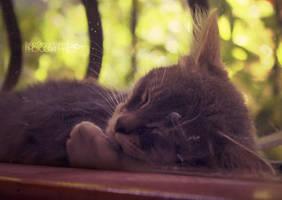Watch You Sleeping by OsmanKarter