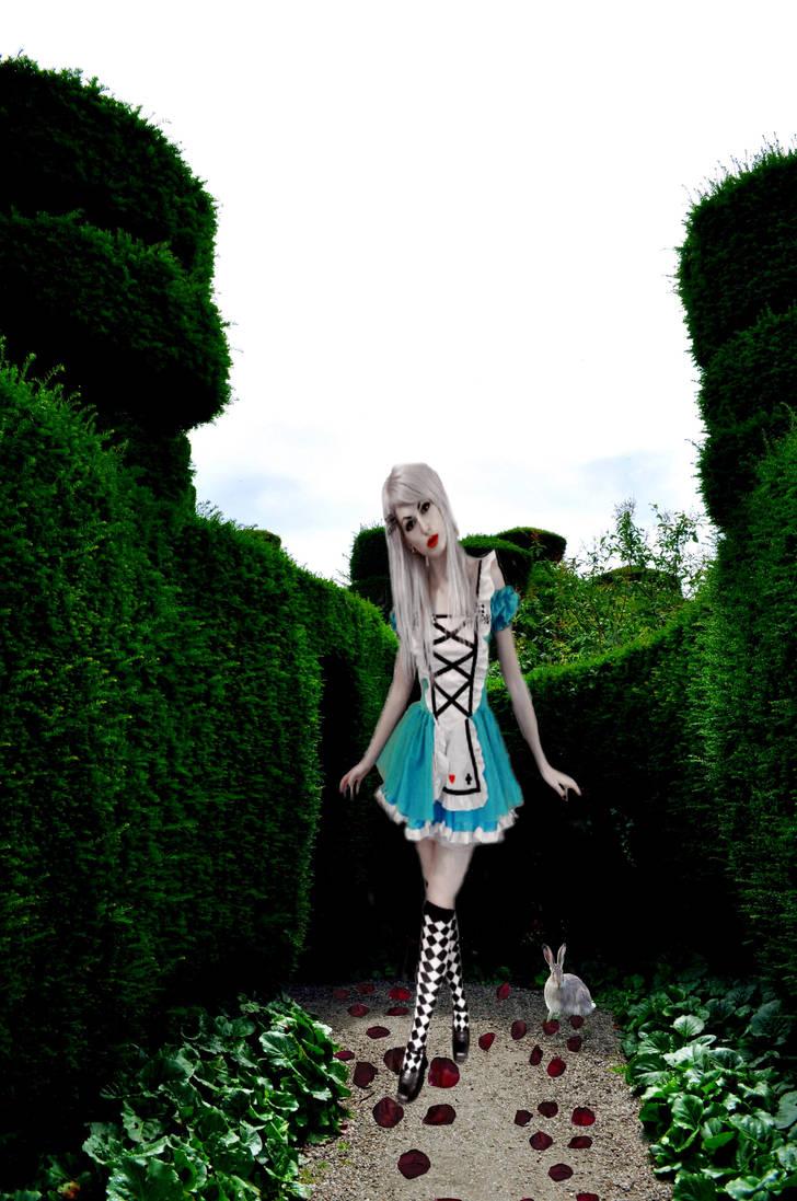 Alice by loversblackrose