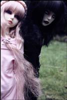 Black and Pink -3- by BlackRoosje