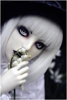 Shiro Chronicle -1- by BlackRoosje