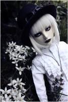 Shiro Chronicle -2- by BlackRoosje