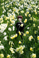 Spring by BlackRoosje