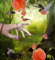 Birds by Aysha1994raven