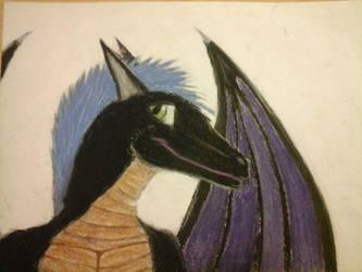 Black dragon furry art by kon-rocks