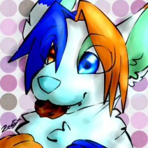Renilichking's Profile Picture