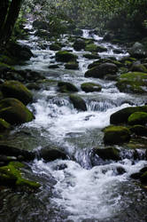 downstream beauty by xthumbtakx