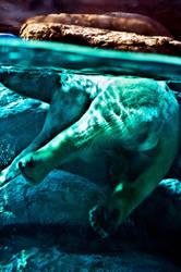 polar butt by xthumbtakx