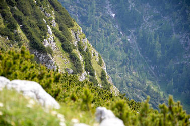 Hallstatt Berghang by xthumbtakx