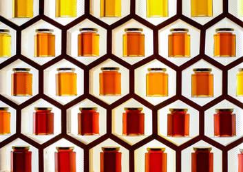 honeycomb by xthumbtakx