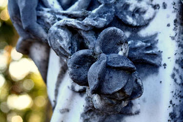 The Rose by silentmeg09