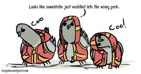 Pigeons in hoodies by izumizagari