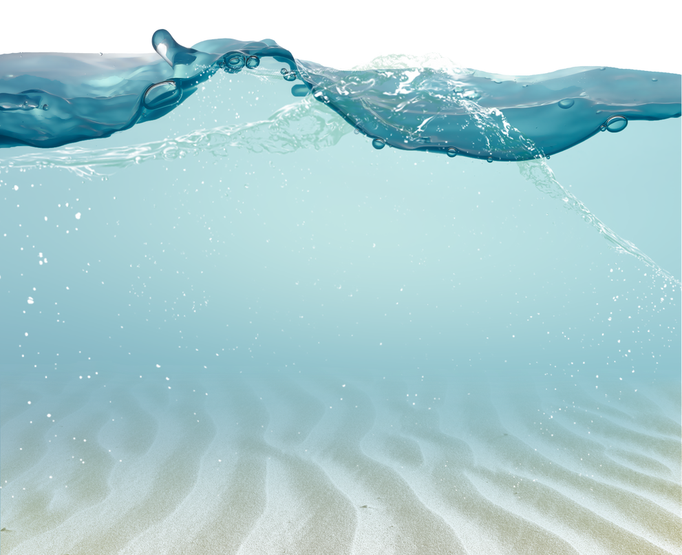 sea ground cover transparent png clip art image gallery - HD 2538×2065
