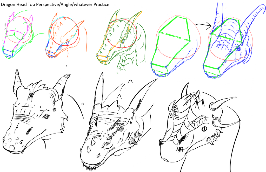 Top Dragon Head Perspective Practice by Blocko-maniac