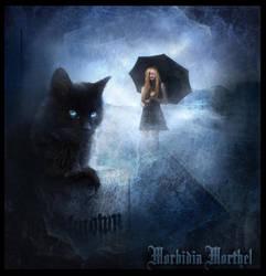 ...Cat Night... by MorbidiaMorthel
