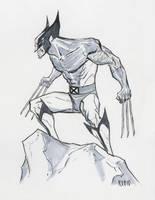 Wolverine commission by BobbyRubio