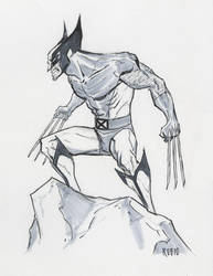 Wolverine commission by BobbyRubio