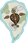 Callie the Sea Turtle by vhartley