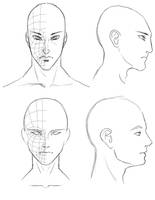 Orthographic Head Drawings by Athey