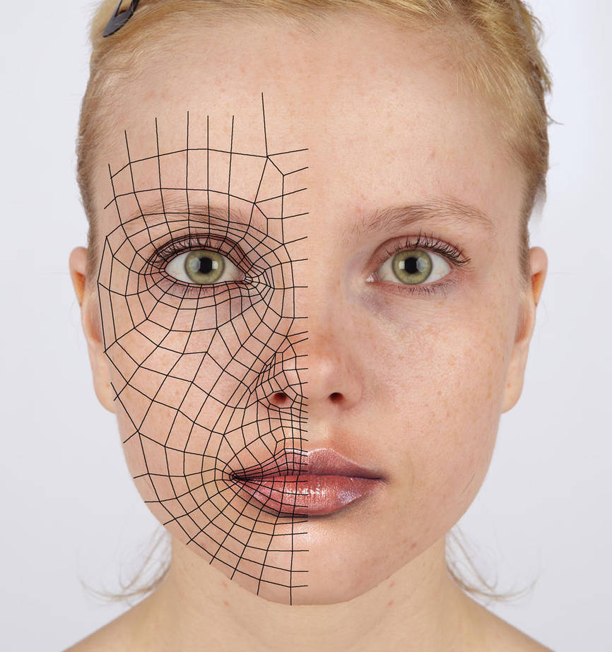 3d reference - face loops by Athey