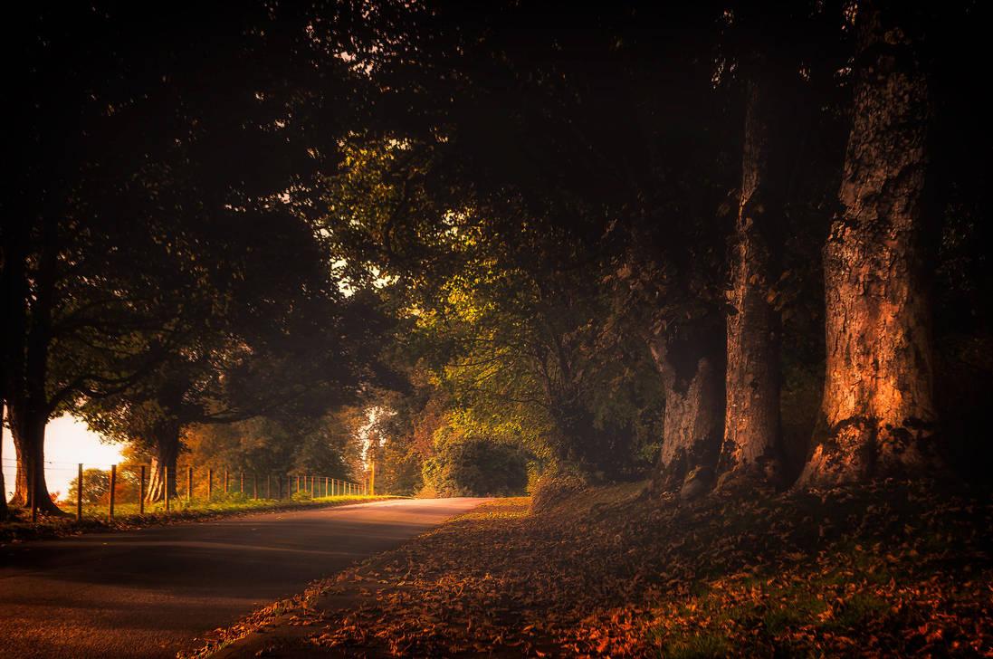 Autumn Ireland by 1darkstar1