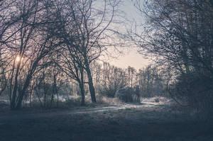 Morning Silence by 1darkstar1