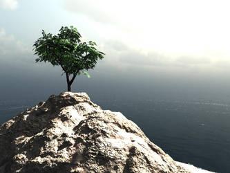 Tree by henrytj