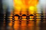 Golden drops by DragonflyAndromeda