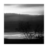 Lone by leoatelier