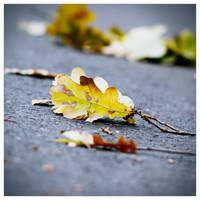 Fall down by leoatelier