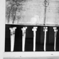 Cloning attempt by leoatelier