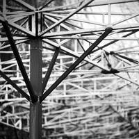 Keep the structure alive by leoatelier