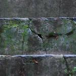 A little story in the asphalt by leoatelier