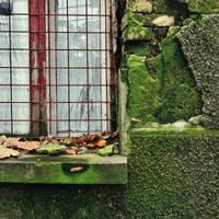 Green wall by leoatelier