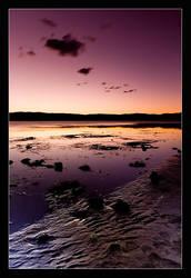 lake illawarra II by verty