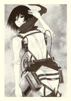 Mikasa by cielo-a-pecorelle