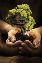 bonsai tree mansion by iGabo