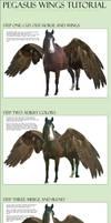 Pegasus Wings Tutorial by nikkigroner