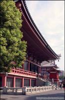 Asakusa Shrine by telophase