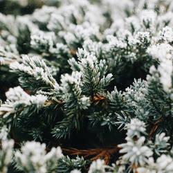 It's time to say goodbye winter! by agatyfotodzienniki