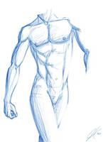 Anatomy Study by heslo