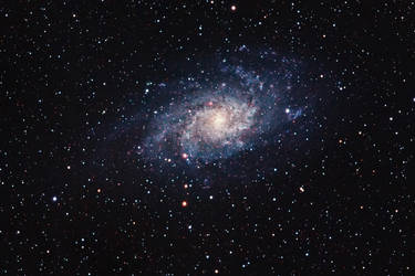 M33 - Triangulum Galaxy - 5DMkII by DoomWillFindYou