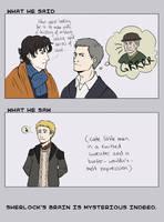 Sherlock: Incongruency by FowlHunter