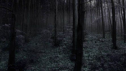 Dark Forest by Bideven
