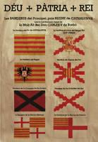 Flag chart of Carlist Catalonia by Ennio444