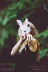 White Rabbit by panderbear