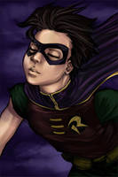 Robin Flying High by loonylucifer