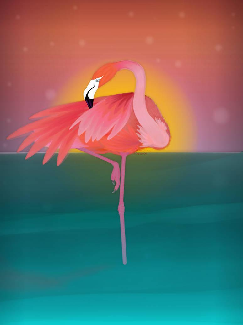 Flamingo by Yeeyi